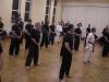 002 Neben TeilnehmerInnen vom heimischen Kung Fu waren Schüler und Lehrer aus dem Karate, Ju Jutsu, Si Ha Ryu und vom Phoenix Kung Fu anwesend
